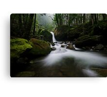 Meanders House of Green Canvas Print