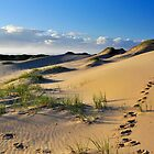 Footsteps In The Sand. by Terry Everson