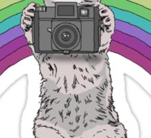LOMO KITTY!  Sticker