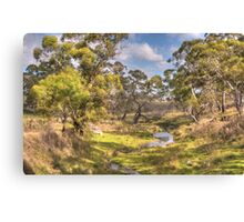 Water Source - Oberon, NSW Australia - The HDR Experience Canvas Print