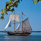 St Lawrence II by PhotosByHealy