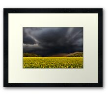 Yellow and Black Framed Print