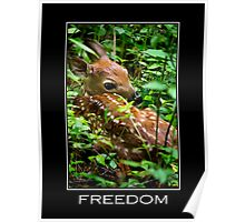 Freedom Inspirational Art Poster
