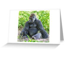 Gorilla 03 Greeting Card