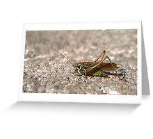 little green chirring friends Greeting Card