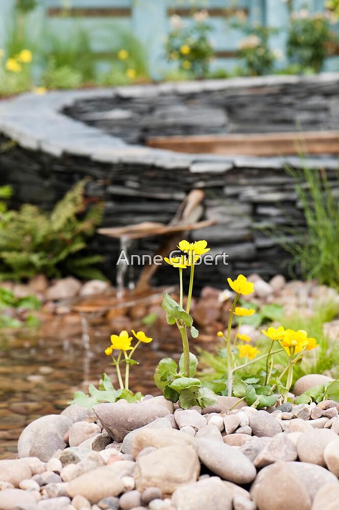 Marsh Marigolds by Anne Gilbert