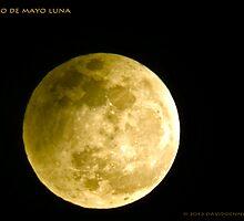 Cinco De Mayo Luna by David Denny