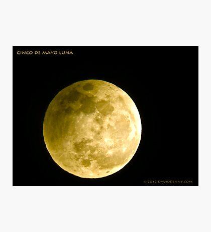 Cinco De Mayo Luna Photographic Print