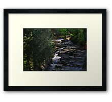 The Devil's Gorge, River Greta, Light and Shadow, England Framed Print