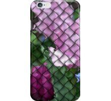 Colours Lattice iphone case  iPhone Case/Skin