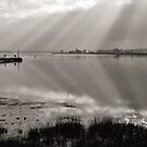 Exe Estuary near Turf Locks Hotel by peteton