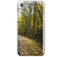 Back Roads #55436 iPhone Case/Skin