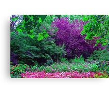 St. James Garden Canvas Print