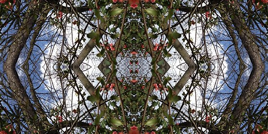 Mirrored Tree Collage 1 by ZugArt