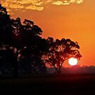 Bushfire Sunset by Rick Playle