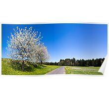 Countryside Spring Poster