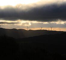 Wind turbines at Makara by Duncan Cunningham