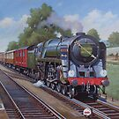 Britannia Pacific on the Golden Arrow. by Mike Jeffries