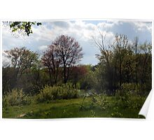 Evening in Spring Poster