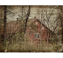 Barn through the Trees Photographic Print