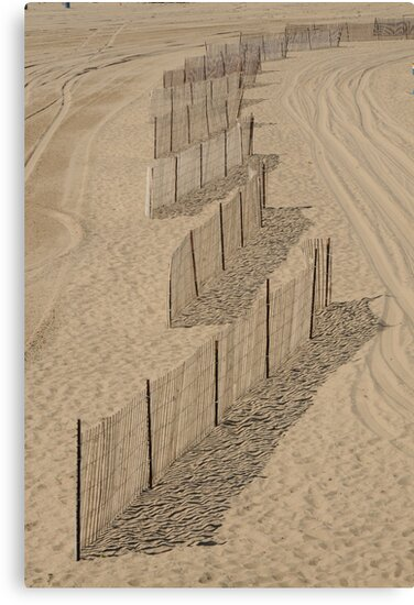 Shadow on the Sand  by Merilyn