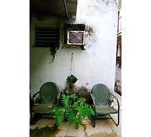 Backyard Garden Photographic Print