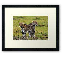 Loving Couple-Kenya Framed Print