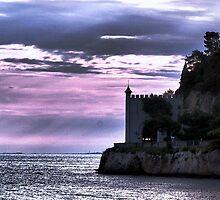 Castle in Slovenia, Europe by loiteke