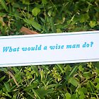 What would a wise man do? by Rosebuds