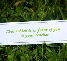 That which is in front of you is your teacher by Rosebuds