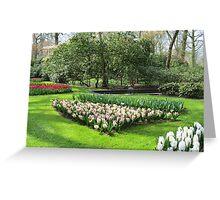 Beds of Red Tulips and Pink Hyacinths - Keukenhof Gardens Greeting Card