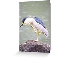 Awe, that feels better! Greeting Card
