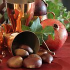 Chestnuts & pomegranate. by Fizzgig7
