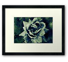 Gravel Rose Framed Print