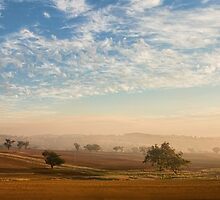 Smokey Sunset #2 ~ Cootamundra (NSW) by Rosalie Dale