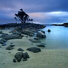 &quot;Presence&quot;  Binalong Bay, Tasmania - Australia by Jason Asher