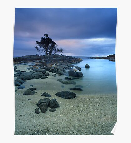"""Presence"" ∞ Binalong Bay, Tasmania - Australia Poster"