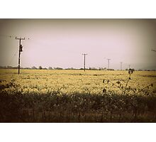 Retro Spring Photographic Print