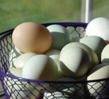A basket of eggs Sticker
