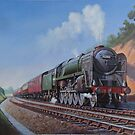 Riddles 9F Evening Star. by Mike Jeffries