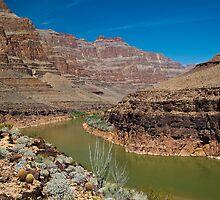 Colorado Grand by diggle