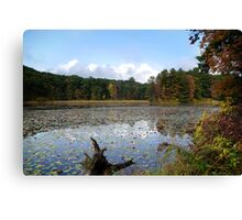 Lily Lake Landscape Canvas Print