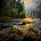 Time On Your Hands by Charles & Patricia   Harkins ~ Picture Oregon
