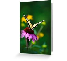 Butterfly Bon Voyage Greeting Card