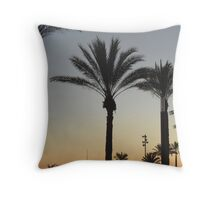 Still. a part of Life #55  Throw Pillow
