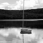 Tiny Boat in Big Pond by John Butler