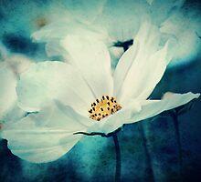 Aqua Flower by Linda Hoey