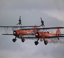 Wingwalkers by Andy Jordan