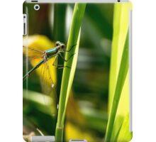 Willow Emerald. iPad Case/Skin