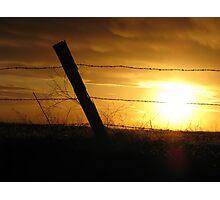 Fence Post Photographic Print